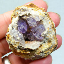 Amethyst Quartz Crystals in Geode from Sonoran Desert Mexico 5cm 64g