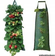 6 x Fabric Hanging Planter Grow Bag Pouch Tomato Herbs Flowers Strawberries