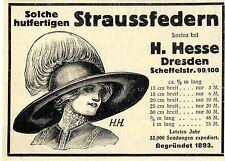 H. Hesse, Dresden hutfertige Straussfedern (H.H.) Histor. Künstler- Werbung 1912
