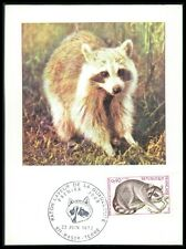 FRANCE MK 1973 FAUNA COON WASCHBÄR MAXIMUMKARTE CARTE MAXIMUM CARD MC CM bk19