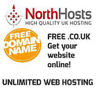 Professional Web Hosting - Free .co.uk domain, not here today gone tommorrow!