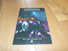 THE DEAD WEATHER - DODGE AND BURN !!!!!!!! FRENCH PRESS ADVERT