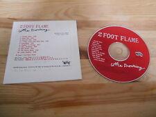 CD Indie 2 Foot Flame - Ultra Drowning (10 Song) Promo MATADOR cb