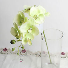 Hight Quality Artificial Fake Butterfly Orchid Flower Home Garden Decoration CO