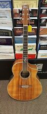 Ibanez Exotic Wood Acoustic Electric Guitar with Gig Bag