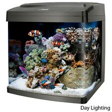 Coralife Bio Cube 29 Gallon Aquarium System for All Water Types