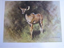 DAVID SHEPHERD LIMITED EDITION KUDU PRINT FROM 1969