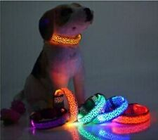 "LED Dog Collar Purple Leopard w Purple LED -3 Light Modes 15 1/2"" to 25 1/2"" NEW"