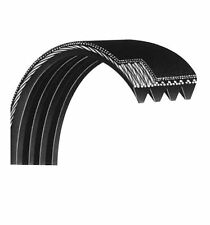 Freemotion Healthrider Image Nordictrack Proform Treadmill Drive Belt 224019 6r