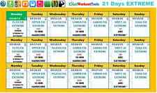Excel Spreadsheet Workout Calendar +Exercise Tracker Tool for 21 Day Fix EXTREME