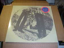 LP:  TY SEGALL & WHITE FENCE - Hair    SEALED NEW