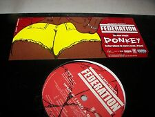 "FEDERATION DONKEY / WHAT IF I HAD A GUN 12"" Single NM Virgin 2004 PROMO"