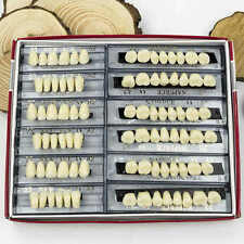 Acrylic Resin Denture 24 Plate Full Set 28X1 A2 Teeth Upper Lower Shade Dental