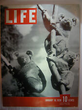 LIFE MAGAZINE JANUARY 10, 1938 KOALAS