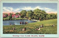 Unused Linen Postcard Clark Island Maine ME St. George CowsDucks Lake Country