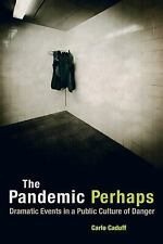 NEW - The Pandemic Perhaps: Dramatic Events in a Public Culture of Danger