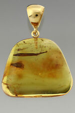 CADDISFLY & LEAF Genuine BALTIC AMBER Silver Gold Plated Pendant 5.7g p160818-33