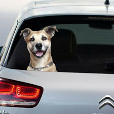 Dog Peeking Security Funny Novelty Decal Window Sticker Car Gift Present Large