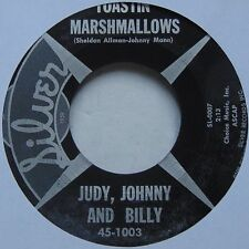 JUDY, JOHNNY and BILLY: Toastin Marshmallows SILVER country bopper 45 HEAR!