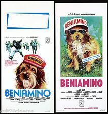 BENIAMINO LOCANDINE CINEMA (1°-2° TIPO) FILM JOE CAMP 1974 BENJI PLAYBILL POSTER