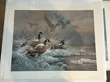 "LARRY FANNING ""WINTER RETREAT- CANADA GEESE"" SIGNED NUMBERED LIMITED EDITION"