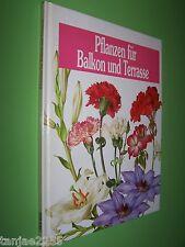 Pflanzen für Balkon und Terrasse  geb. (7)