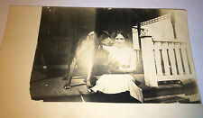Antique Outdoor Porch Scene, Dog & Collar! Cat! Real Photo Postcard! Animal RPPC