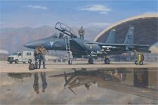 WONG F-15E Strike Eagle Supermarine Spitfire 4th Fighter Wing w/ROBERT TAYLOR