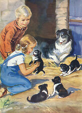 BORDER COLLIE CHILDREN AND PUPPIES LOVELY DOG PRINT GREETINGS NOTE CARD