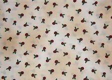 2 Pieces of Debbie Mumm Roses Print Quilt  Fabrics