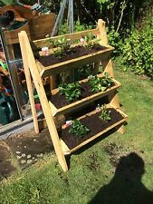 garden trough 3 tier strawberry / herb / flower planter