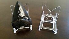 "3 Adjustable 2"" Display Stand Easel Megalodon Shark Tooth Teeth"