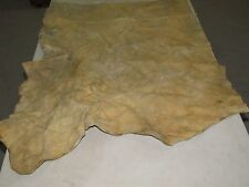 31 X 29 inches SOFT  HOME TANNED MOOSE HIDE, ASH DISCOLORED