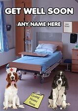 HOSPITAL A5 Personalised Greeting Card Get Well Soon Springer Spaniel PIDKC2