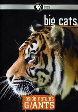 Inside Nature's Giants: Big Cats (2012, DVD NEW)
