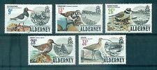 OISEAUX - SEA BIRDS ALDERNEY 1984