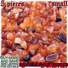 5 Small 10mm Free Ship Tumbled Gem Stone Crystal Natural - Agate Carnelian