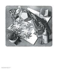 Reptiles M. C. Escher Fantasy Weird Odd B&W Art Print Poster 21.5x25.5