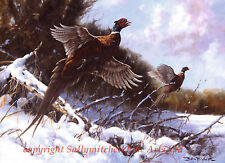 Pheasants Flushed in Snow Christmas cards pack of 10. Game Birds c365x