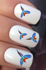 WATER NAIL TRANSFERS COLOURFUL BIRD FLIGHT PARROT MACAW DECALS STICKERS *353