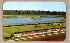 Horse Racing at Hialeah Race Course Florida Parading to the Post Postcard