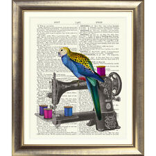 ART PRINT ON ORIGINAL ANTIQUE BOOK PAGE old Sewing machine parrot Picture bird