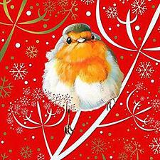 Robin Tarjetas de Navidad Paquete de 10 Tarjetas de Navidad Pájaro Jardín muy efectos Hoja De Oro