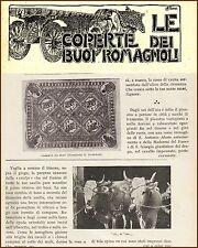 EMILIA ROMAGNA BUOI COPERTE CARRI MELDONA DOVADOLA BRISIGHELLA TRADIZIONE 1920