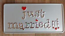 US CAR USA AUTO Hochzeit Kennzeichen Just Married Nummernschild Autoschmuck 5