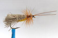 1 x Mouche Sèche SEDGE GODDARD ventre ORANGE H10/12/14/16 mosca fly belly peche