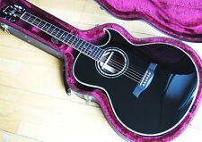 Ibanez JSA10 Satriani Akustik Gitarre / Fishman / Tonabnehmer / inkl. Koffer