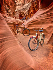 Owl Canyon Trio by Todd Van Fleet Bike Cycling Bicycle Canvas Giclee 34x24