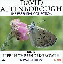 "David Attenborough 2008 "" Life In The Undergrowth "" ** Seller's Bargains**"