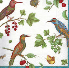 Caspari Jewelled Birds Ivory luxury paper napkins traditional  20 in pack